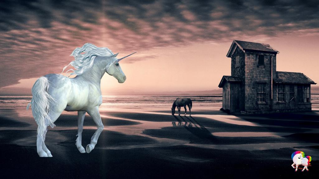 Sur une plage fantastique la rencontre magique entre une licorne blanche et un cheval gris