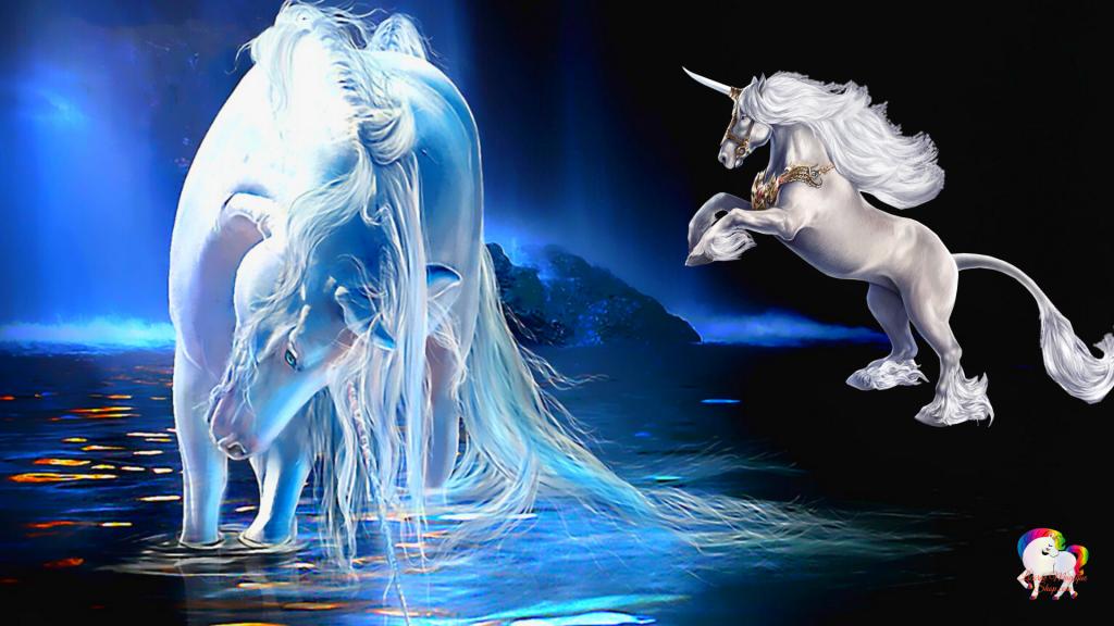 Rencontre dans un monde magique et fantastique de deux licornes blanche