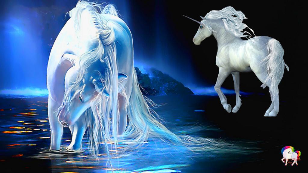 Rencontre dans un monde magique et fantastique de deux licornes blanches pure
